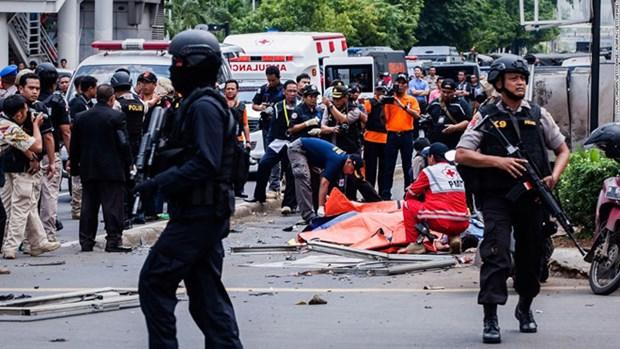 L'Indonesie et l'Egypte scellent leur cooperation antiterroriste hinh anh 1