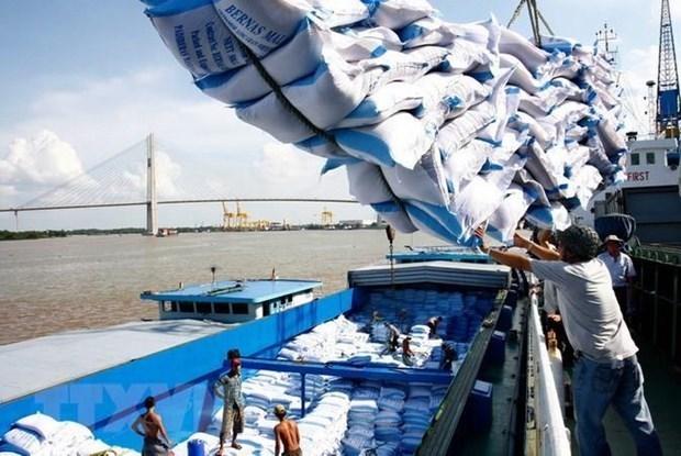 Opportunites d'exportations de riz vers l'Egypte hinh anh 1