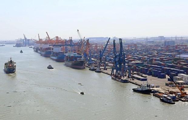 Plus de 128,4 millions de tonnes de marchandises transportes via les ports maritimes hinh anh 1