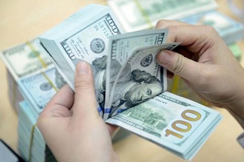 Nouvelle reglementation sur l'utilisation des devises etrangeres au Vietnam hinh anh 1
