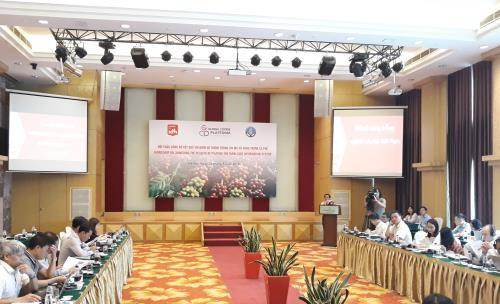 Bilan du projet pour le developpement durable du cafe de Lam Dong hinh anh 1