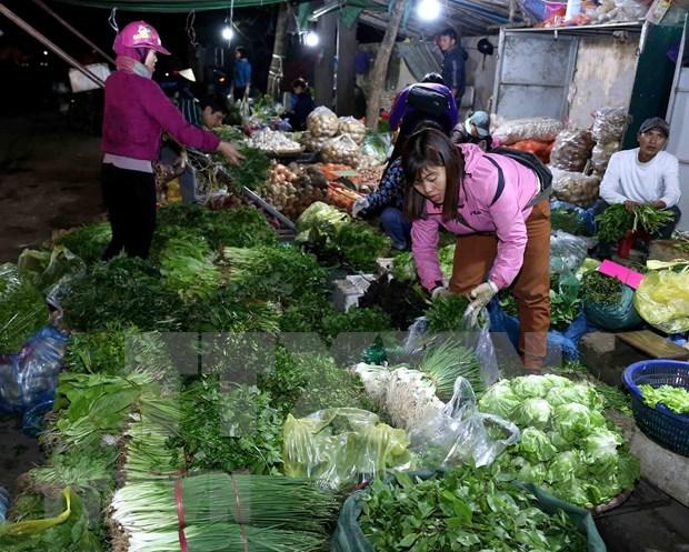 Developpement d'un systeme de centres modernes d'approvisionnement des produits agricoles hinh anh 1
