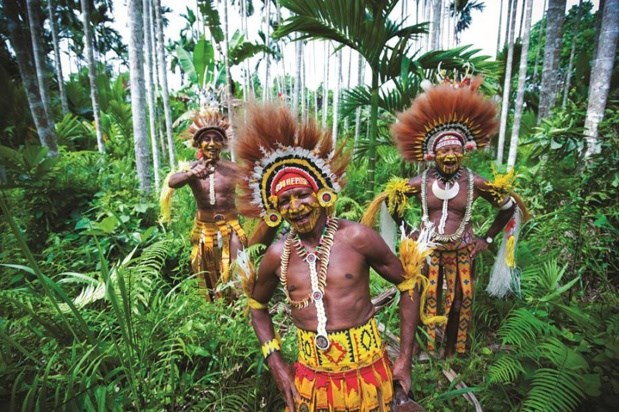 La Papouasie-Nouvelle-Guinee va delivrer des visas en ligne a toutes les economies membres de l'APEC hinh anh 1