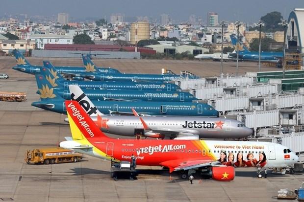 Les transporteurs aeriens nationaux ameliorent leur ponctualite hinh anh 1