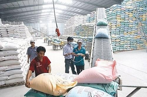 De nouvelles solutions pour stimuler les exportations de riz face aux defis du marche hinh anh 1