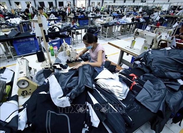 L'EVFTA simplifiera les formalites d'import-export hinh anh 1