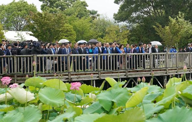 Le PM vietnamien present au Festival de lotus Japon – Vietnam hinh anh 1