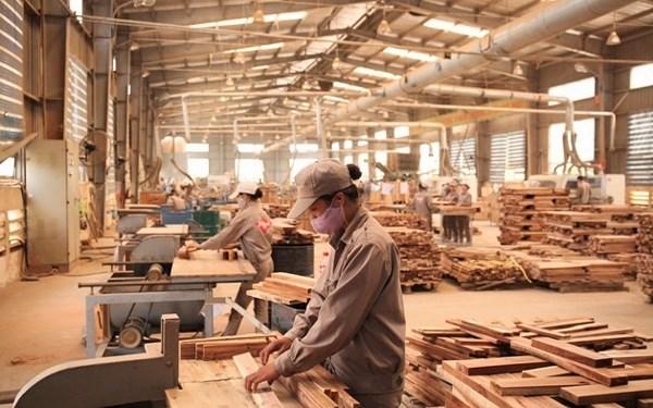 Les exportations de produits de bois estimees a plus de 4,9 milliards de dollars au premier semestre hinh anh 1