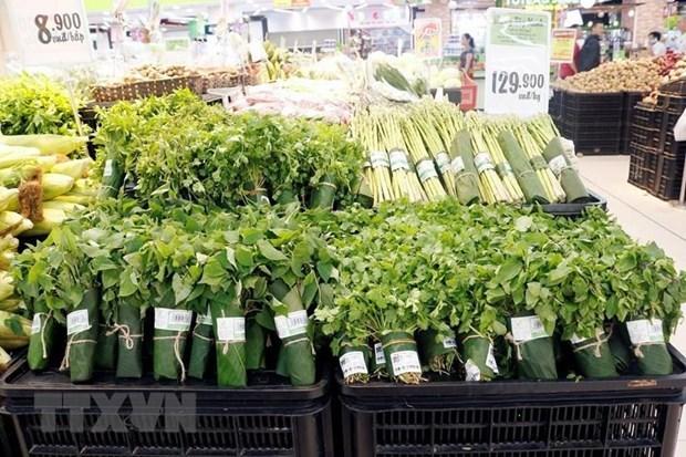 La province de Ninh Binh dit « non » au plastique hinh anh 1