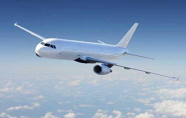 Vinpearl Air operera ses premiers vols commerciaux a partir de juillet 2020 hinh anh 1