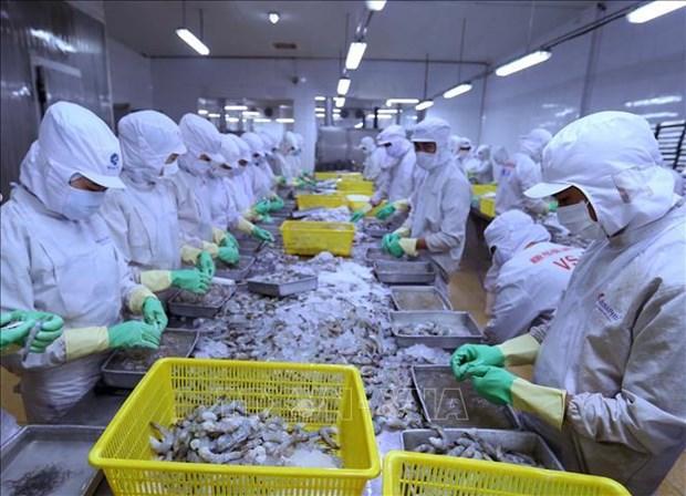 Le Vietnam realise un excedent commercial en Israel hinh anh 1