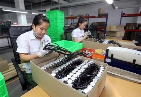 IDE: 4,19 milliards de dollars investis a Ho Chi Minh-Ville en huit mois hinh anh 1