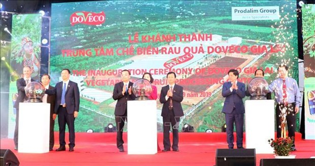 Mise en service du plus grand centre de transformation de fruits et legumes au Vietnam hinh anh 1