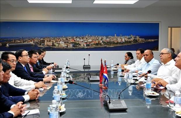 Le Vietnam et Cuba resserrent leurs liens d'amitie traditionnels hinh anh 2