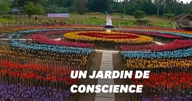 Contre la pollution: un jardin de