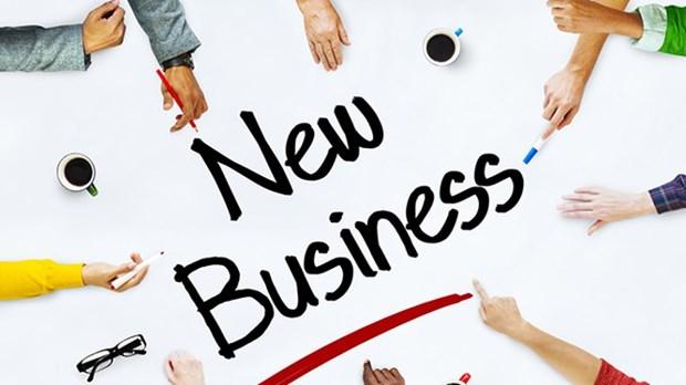 Chaque jour, 500 entreprises sont creees et reprennent leurs activites hinh anh 1