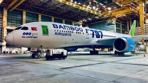 Bamboo Airways receptionne un Boeing B787-9 pour ses vols domestiques hinh anh 1