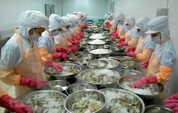 Les exportations de produits aquatiques en 2019 laissent a desirer hinh anh 1