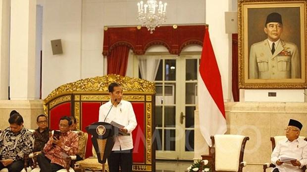 L'Indonesie et les EAU vont conclure des accords de pres de 19 milliards de dollars hinh anh 1