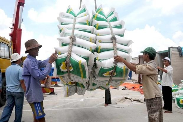 Les exportations de riz vers les Philippines en forte hausse en 2019 hinh anh 1
