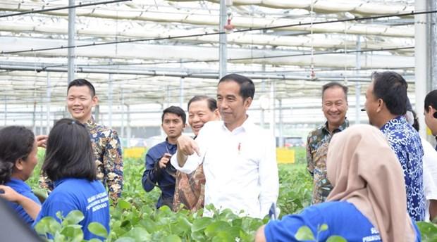 L'Indonesie inaugure une usine de fabrication de viscose de 1,1 milliard de dollars hinh anh 1