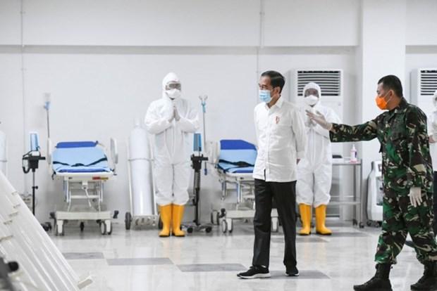 Les pays d'Asie du Sud-Est redoublent d'efforts contre le coronavirus hinh anh 1