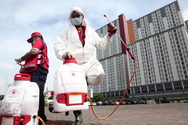 L'Indonesie et la Malaisie aux prises avec le coronavirus hinh anh 1