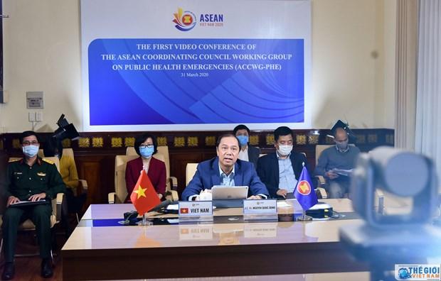 L'urgence de sante publique au menu d'une reunion des hauts officiels de l'ASEAN hinh anh 1