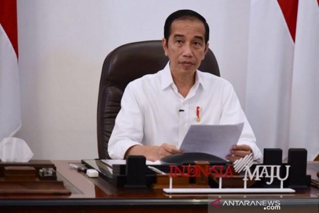 L'Indonesie suspend les elections regionales en raison du COVID-19 hinh anh 1