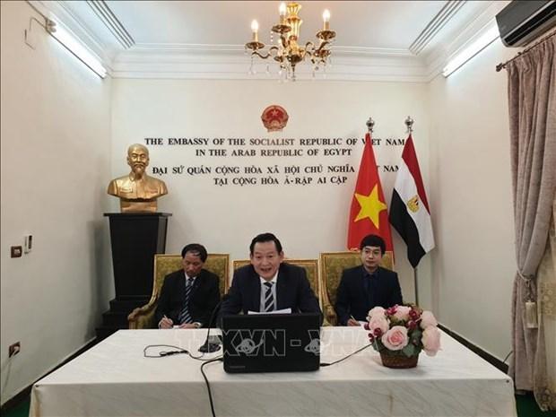Activites celebrant l'anniversaire du President Ho Chi Minh en Egypte et au Mexique hinh anh 1