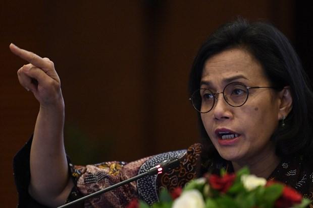 La croissance indonesienne fait grise mine au 2e trimestre hinh anh 1