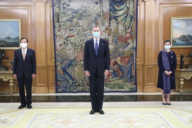 Le roi d'Espagne salue les realisations socio-economiques du Vietnam hinh anh 1