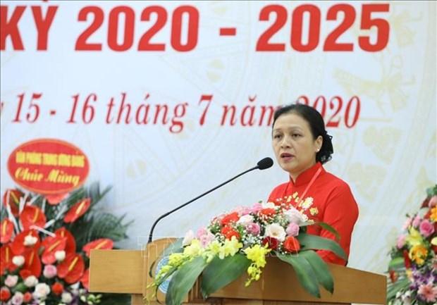 L'organisation du Parti de l'Union des organisations d'amitie du Vietnam tient son IXe congres hinh anh 1