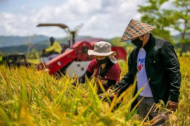 Agriculture: Les Philippines et la BM signent un accord de pret de 370 millions de dollars hinh anh 1