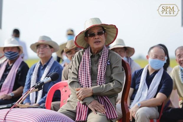 Le Cambodge atteindra bientot son objectif d'exporter un million de tonnes de riz l'apres-COVID-19 hinh anh 2