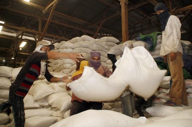Le Cambodge atteindra bientot son objectif d'exporter un million de tonnes de riz l'apres-COVID-19 hinh anh 1