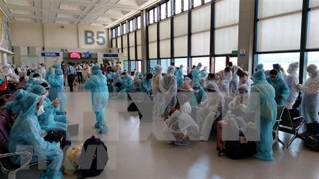Coronavirus : Rapatriement de plus de 240 citoyens vietnamiens de Singapour hinh anh 1