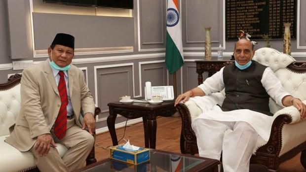 L'Inde et l'Indonesie renforcent leur cooperation en matiere de defense et de securite hinh anh 1