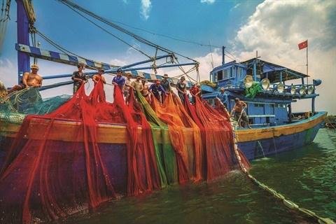 Photographes vietnamiennes, un itineraire difficile pour un reve a portee de main hinh anh 3