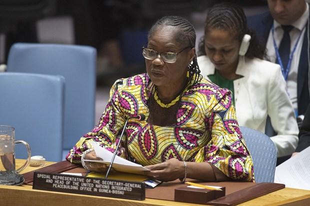 Le Vietnam appelle les parties a mener la reconciliation nationale en Guinee-Bissau hinh anh 2