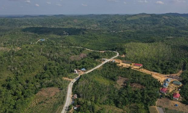 L'Indonesie suspend son plan de deplacement de la capitale sur l'ile de Borneo hinh anh 1