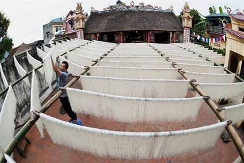Les delicieuses nouilles de riz traditionnelles du village de metier de Hung Lo hinh anh 1