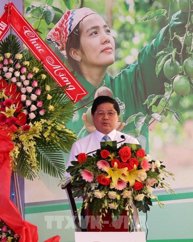 Gia Lai exporte les 100 premieres tonnes de grenadilles vers l'UE hinh anh 1