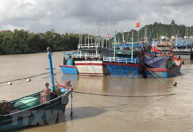 La tempete Goni s'affaiblira en depression tropicale et causera des pluies torrentielles hinh anh 1