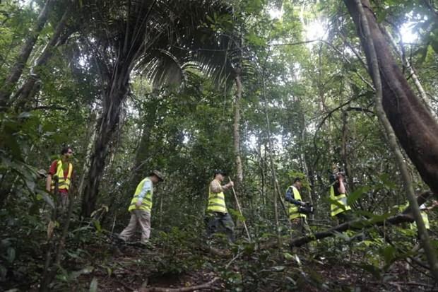 Cambodge: Quelque 25 millions de dollars generes par l'ecotourisme au cours des neuf premiers mois hinh anh 1