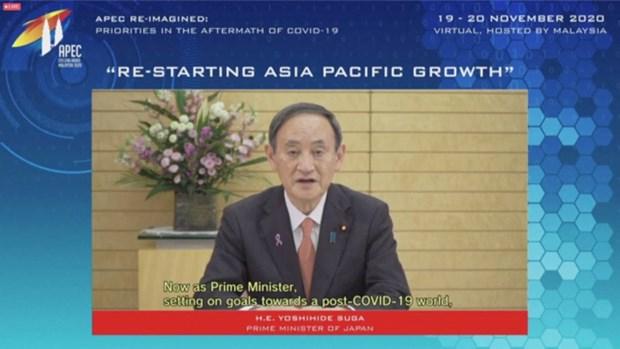 APEC 2020 : les dirigeants appellent a une cooperation pour la reprise econmique hinh anh 1