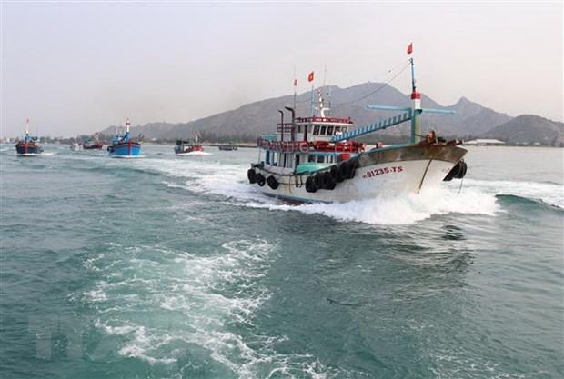 Le Vietnam fait des efforts dans la lutte contre la peche INN hinh anh 1