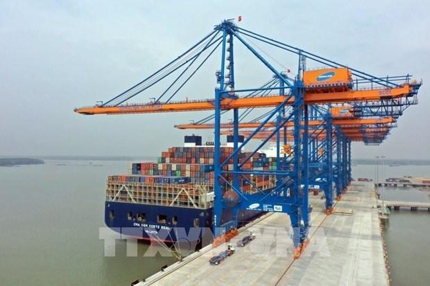 Le transport de marchandises en conteneurs via les ports maritimes de Ba Ria-Vung Tau en hausse hinh anh 1