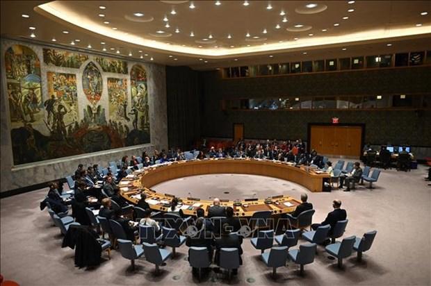 Le Vietnam appelle les parties prenantes au Liban a creer un gouvernement hinh anh 2