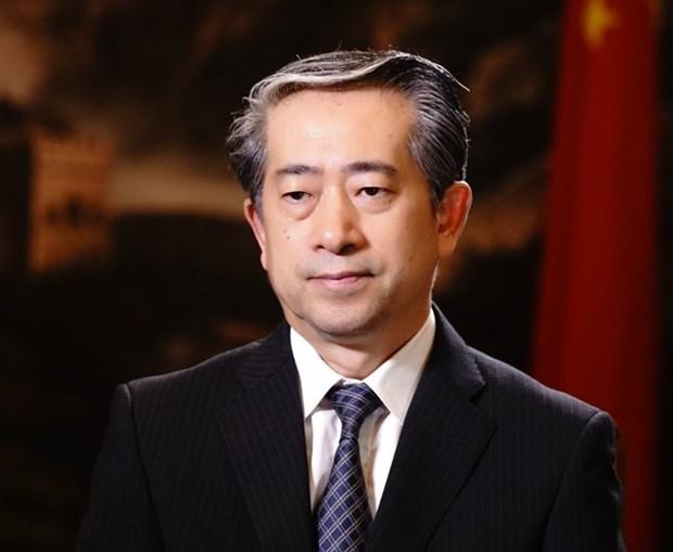 Les elections legislatives au Vietnam seront couronnees de succes hinh anh 1